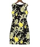 FDFAF Elegant Women Dress New Fashion Embroidery Slim Woman Sleeveless O Neck Woman Dresses M-3XL Black XL