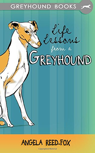 life-lessons-from-a-greyhound