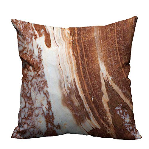 fengruihome Pillowcase with Zipper Decorative Onyx Surface Ultra Soft & Hypoallergenic 21.5x21.5 inch(Double-Sided ()
