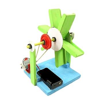 D DOLITY Juguete Eléctrico de Rueda de Agua de Madera Coloreado Kit Experimental Científico Regalo para Niños: Amazon.es: Juguetes y juegos