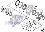 BMW Genuine Motorcycle Bevel Wheel Bearing O-Ring 138X2.62 R nine T R1200GS R1200GS Adventure HP2 Enduro HP2 Megamoto R1200RT R900RT R1200R R1200ST HP2 Sport R1200S K1200S K1300S K1200R K1200R Sport
