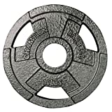 Champion 1272499 Barbell 10-Pound Olympic Grip Plate