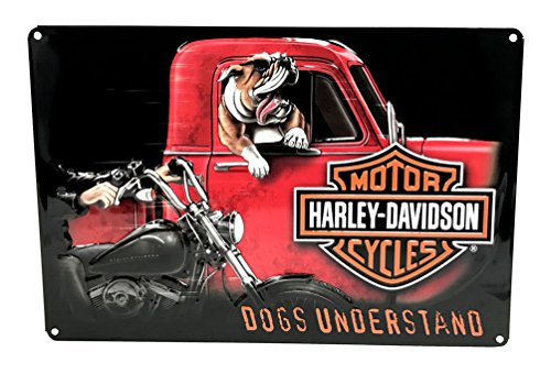 harley davidson dog accessories - 2
