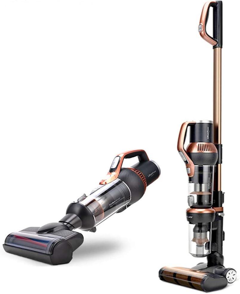 Aspirador inalámbrico multifunción de mano, herramienta de limpieza de mascotas para alfombras domésticas, aspirador avanzado recargable 2 en 1 tipo Putter.: Amazon.es: Hogar