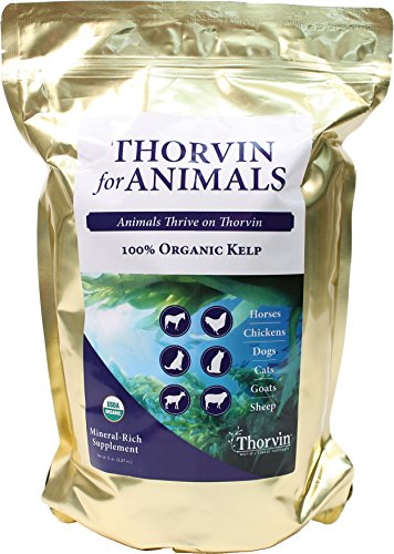 UPC 793573198068, NATURES BEST ORGANIC FEED 163353 Organic Thorvin Kelp Feeder For Animals, 5 lb