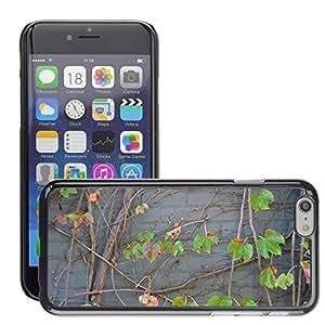 """Print Motif Coque de protection Case Cover // M00154328 Ladrillo textura de la pared de las // Apple iPhone 6 6S 6G PLUS 5.5"""""""