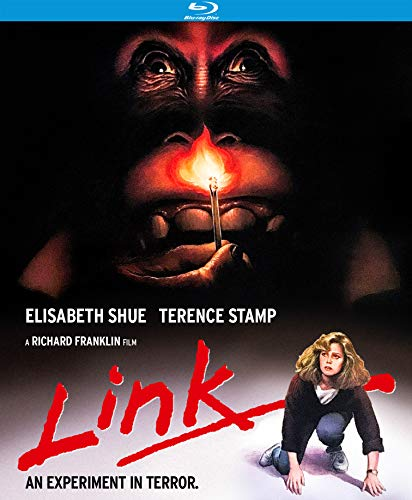 Edition Link - Link (Special Edition) [Blu-ray]