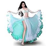 Royal Smeela Belly Dance Costume Set Professional Dress Suit For Women Bra and Belt Skirt Sleeves