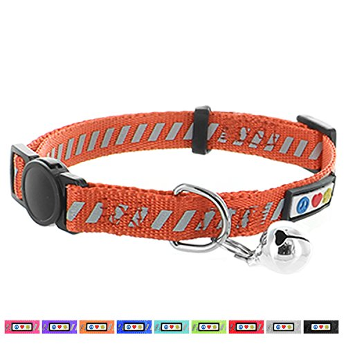Pawtitas Traffic Reflective Cat Collar with Safety Buckle and Removable Bell Cat Collar Kitten Collar Orange Cat Collar (Cat Collar Orange Safety)