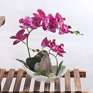 LEEMAN Artificial Flowers Lifelike Real Touch Arrangement Phalaenopsis Bonsai Orchid Miniascape Home Decoration 38