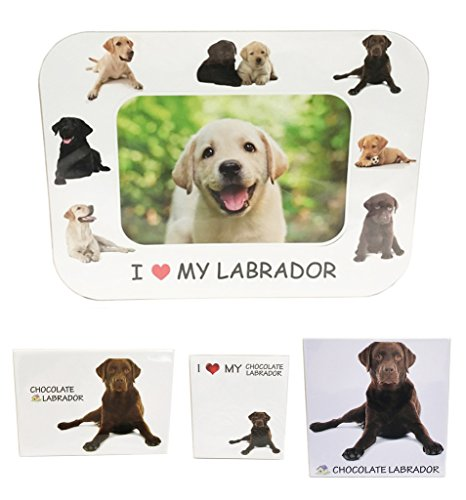 I Love My Chocolate Labrador Magnet Set (2 Metal Magnets, 1 Photo Frame, 1 Memo (Retriever Dog Breed Picture Frame)