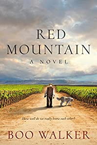 Red Mountain by Boo Walker ebook deal