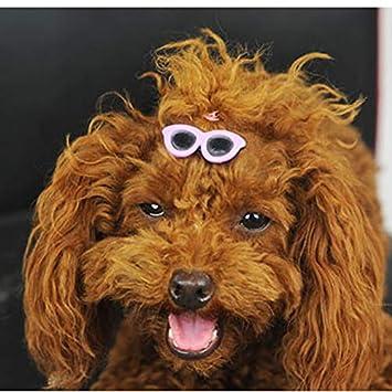 Amazon.com: Lovelystar - Gafas de sol para mascota, gafas de ...