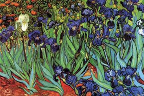 (Walls 360 Peel & Stick Wall Decals: Irises by Vincent Van Gogh (12 in x 8 in))