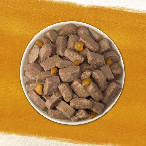 Purina Beyond Wet Dog Food, Chicken & Sweet Potato