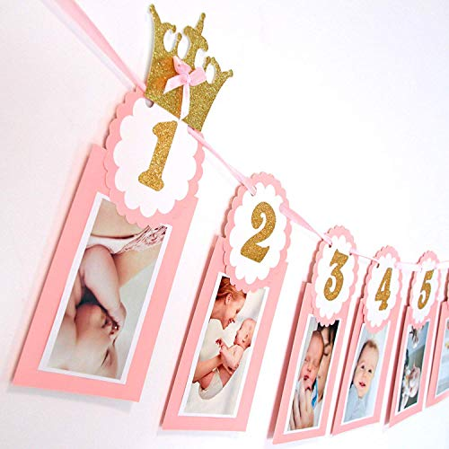Soccerene Pink 12 Months Photo Banner | Gold Glitter Wordings | Girl's First Birthday Decorations ()
