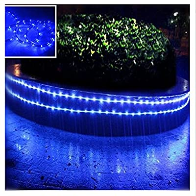 SQUOTI 120V LED Rope Lights, Waterproof LED String Lights for Garden, Backyard, Tree trunks, Indoor and Outdoor Decoration(26FT/8M, Blue)