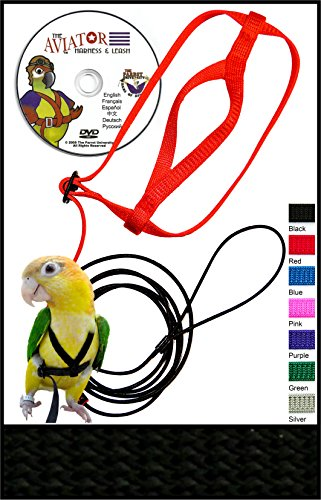 The AVIATOR Pet Bird Harness and Leash: X-Small Black