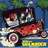 SHAMROCK (初回限定盤)(DVD付)
