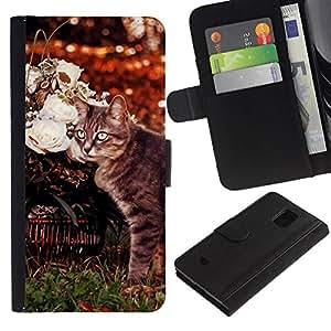 All Phone Most Case / Oferta Especial Cáscara Funda de cuero Monedero Cubierta de proteccion Caso / Wallet Case for Samsung Galaxy S5 Mini, SM-G800 // American Curl Shorthair Cat Manx