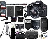 Canon EOS Rebel T6 18MP Wi-Fi SLR Digital Camera + 18-55mm is II Lens + EF 75-300mm III Lens + SanDisk 32GB & 16GB Card + Wide Angle + Telephoto Lens + Flash + Grip + Tripod - 48GB Accessories Bundle