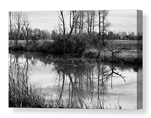 Shaver Creek / Moody Scene / Ready to Hang Wall Art / Fine Art Photography ~ CANVAS WRAP PRINT by PhotoClique
