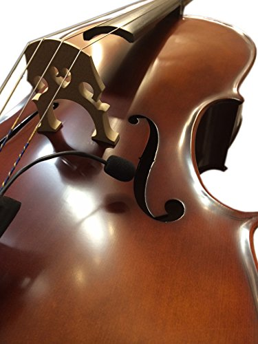 upright bass preamp - 6
