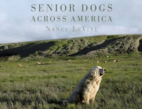 Senior Dogs Across America: Portraits of Man's Best Old Friend [Nancy LeVine] (Tapa Dura)