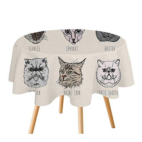 C COABALLA Indie Polyester Round Tablecloth,Set of Different Breeds Cat Portraits Doodle Style Cute Funny Animals Kittens for Home Restaurant,55.1