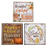 Fun Party Daze Fall/Thanksgiving/Autumn Decorative Autumn Sentiments MDF Signs, 11x11 in.Assorted Among 3 Styles Shown - Pack of 3