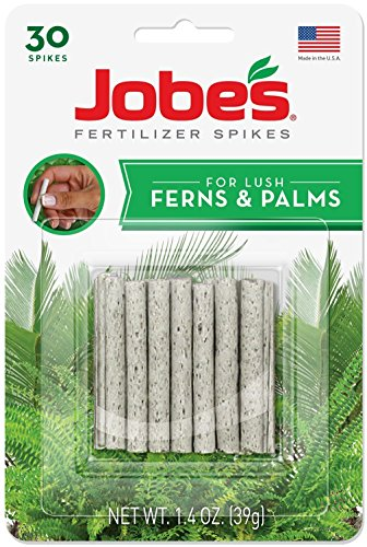 Jobe's 05101 Fern & Palm Fertilizer Spikes, 30 per Blister Pack (Best Fertilizer For Coconut Tree)