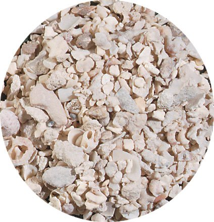 Carib Sea ACS00150 Crushed Coral for Aquarium, 40-Pound by Carib Sea