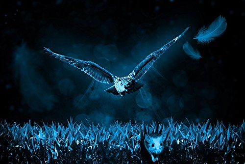 Owl Mouse Hunt Night Nature Hunter Predator - Art Print On Canvas Rolled Wall Poster Print - 30
