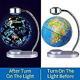 "TINTON LIFE Magnetic Levitation Floating Constellation Globe 8"" Illuminated World Globe Night View"