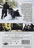 Amigos [Untouchable] [Ntsc/region 1 and 4 Dvd. Import - Latin America].