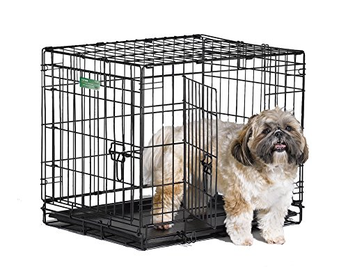 Dog Crate | MidWest iCrate 24' Double Door Folding Metal Dog Crate w/ Divider Panel, Floor Protecting Feet & Leak-Proof Dog Tray | 24L x 18W x 19H Inches, Small Dog, Black
