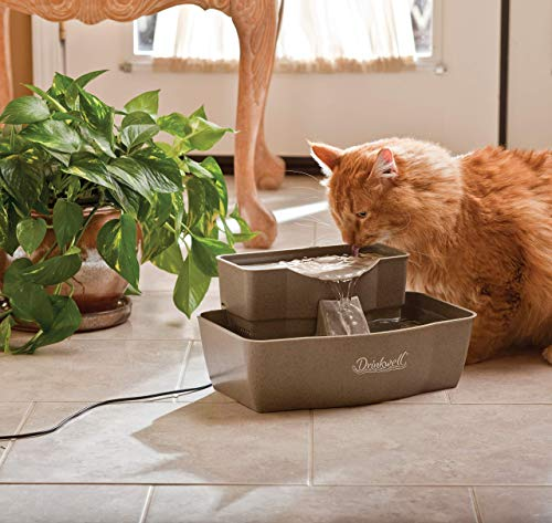 Buy pet fountains cats