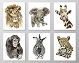 Wildlife wall art #A069 - Set of 6 Animal art prints (8x10). Savannah nursery.Savannah animals.Wildlife prints.Wildlife art prints.Safari animals.Jungle animal pictures.Jungle animals nursery.