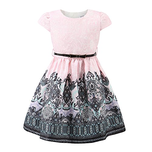 Kids Fashion world Girls Floral Party Dress Princess Dresses for Kids Pink Size 8 -