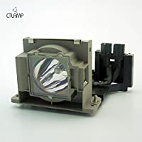 Generic replacement for Mitsubishi VLT-HC910LP projector lamp bulb with housing