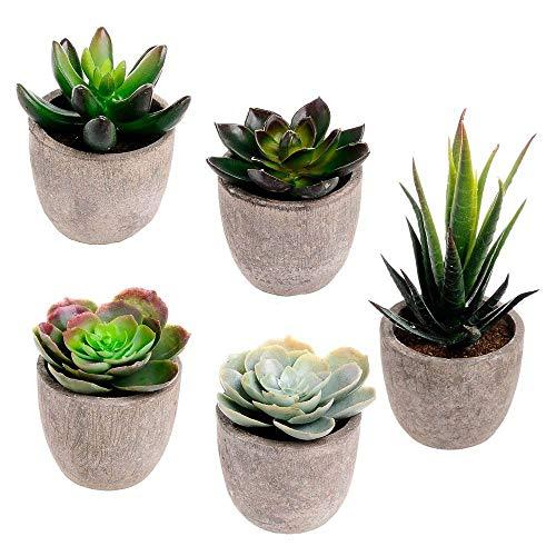 assorted decorative faux succulent artificial succulent cactus fake cacti plants. Black Bedroom Furniture Sets. Home Design Ideas