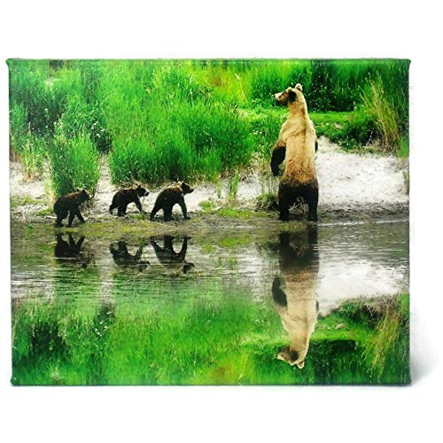 Brown Bear and The Cubs 8X10 Museum Quality Wall Decor