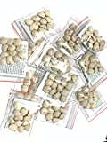 10 Pack Indian Nut 120 Seeds for Weight Loss