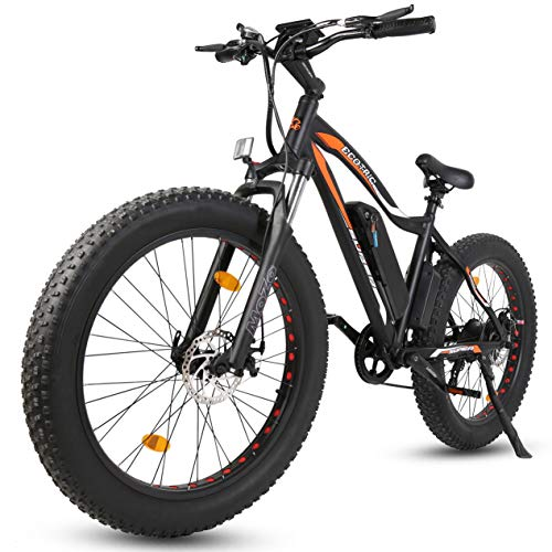 ECOTRIC Powerful Electric Bicycle 26