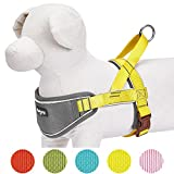 Blueberry Pet 5 Colors Soft & Comfy 3M Reflective Strips Padded Dog Harness Vest, Chest Girth 24.5' - 29.5', Sunshine Yellow, M/L, Nylon Adjustable Training Harnesses for Dogs