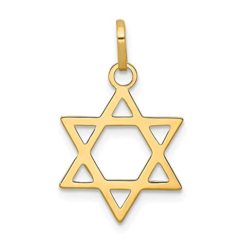 08cd41b6ccd09 Jewel Tie 14K Yellow Gold Star of David Pendant - (0.83 in x 0.55 in)