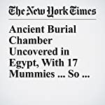 Ancient Burial Chamber Uncovered in Egypt, With 17 Mummies ... So Far | Eli Rosenberg