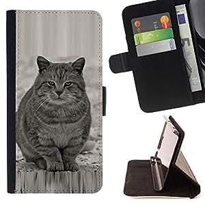 - WHITE FURRY CUTE BEAST GREY CAT FAT - - Prima caja de la PU billetera de cuero con ranuras para tarjetas, efectivo desmontable correa para l Funny HouseFOR Samsung Galaxy S6