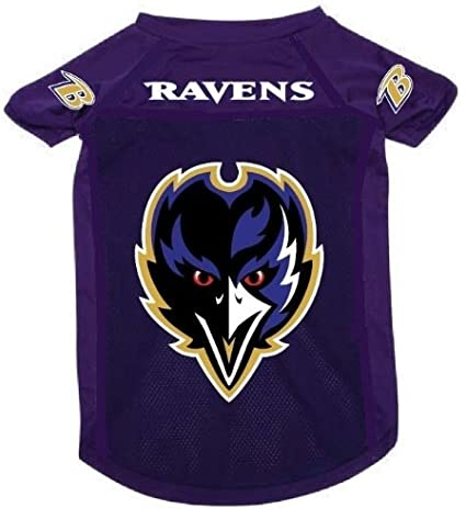 4f6985b31 Image Unavailable. Image not available for. Color  Baltimore Ravens Pet Dog  Football Jersey Alt. Purple XL