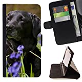 Graphic4You Labrador Retriever Dog Puppy Animal Thin Wallet Card Holder Leather Case Cover for Sony Xperia XA Ultra